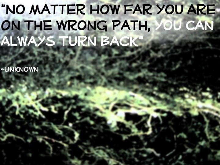 Beaten Path Quote